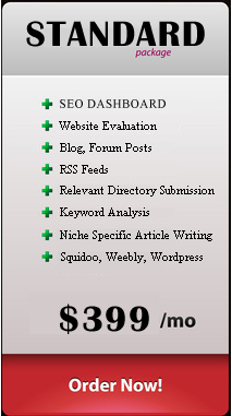 SEO Service Plan Standard