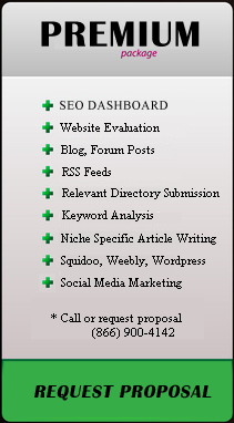 SEO Service Plan Premium